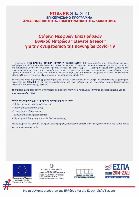 Elevate Greece Χρηματοδότηση